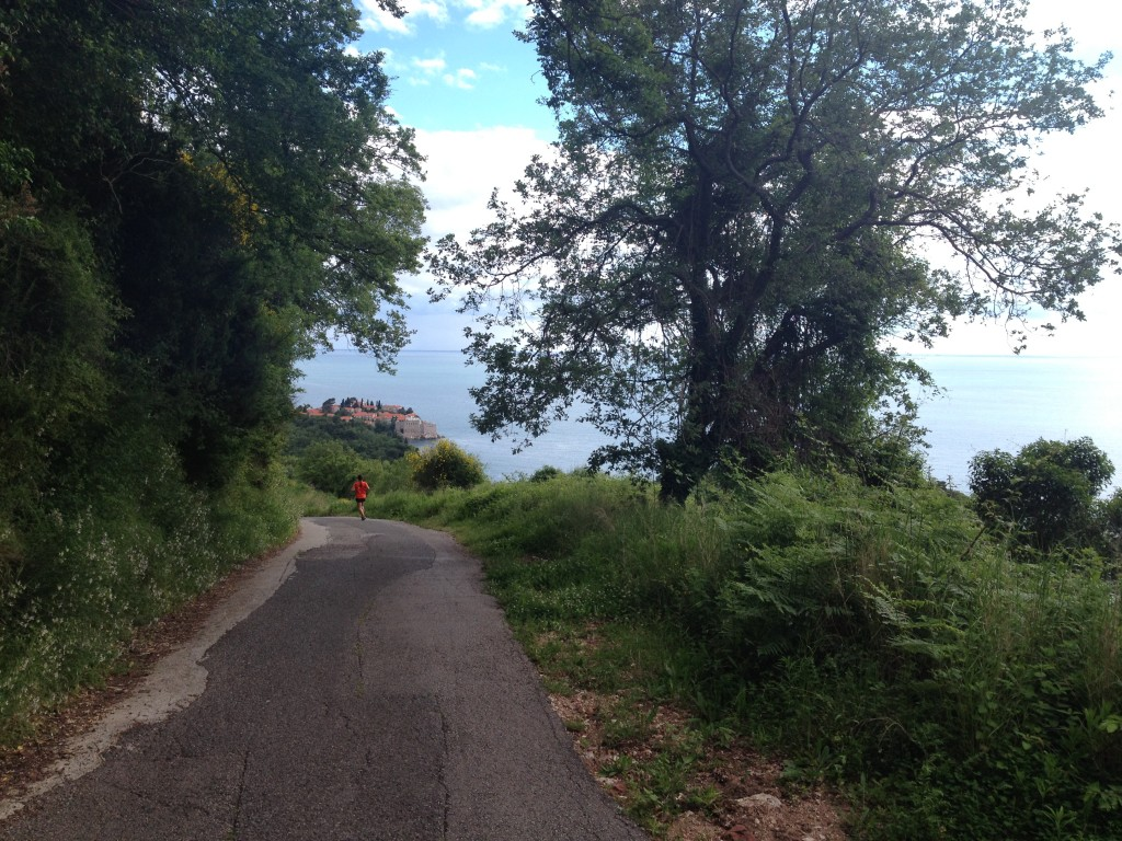 Some of the best views of Sveti Stefan were all from the hillside.